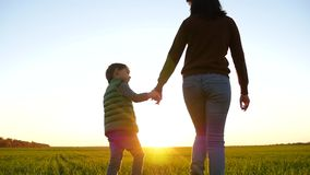 A child walks with his mother, holding her hand against the background of a beautiful sunset. Cute boy looks at his