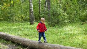 Child walking in autumn Park. The boy goes on a fallen tree Royalty Free Stock Photo