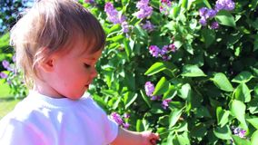 A child walks in the Park. A child plays in the Park stock footage