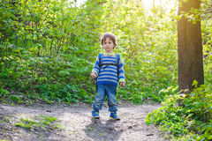 A child walks through the woods. Royalty Free Stock Photo