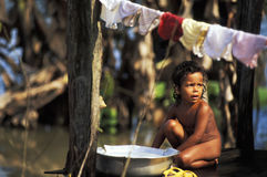 Child washing clothes. In the Amazon forest, Rondonia, Brazil Stock Image