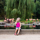 Child watching animals and birds at the zoo Stock Photography