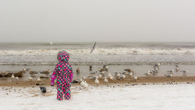 Child watching birds on the beach. Child in colorful ski suit observing birds at Baltic beach on stormy winter`s day. 01.06.2017, Gdansk, Poland Royalty Free Stock Images