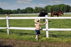 Child watching the horses Royalty Free Stock Image