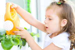Child watering flowers Stock Image