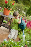Child watering garden Stock Images