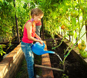 Child watering the garden Stock Photo