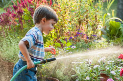 Child Watering Garden with Hose Royalty Free Stock Image