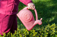 Child watering garden with pink watering can. Little girl watering plants of garden Royalty Free Stock Image