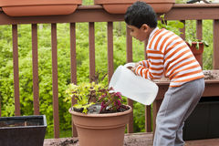 Child Watering Potted Plant on a Deck Stock Photo