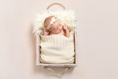 Child wearing a hairband in baby basket, closeup Royalty Free Stock Photos