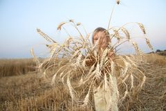 Child with wheat ears Royalty Free Stock Images