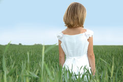 Child in a Wheat Feild Royalty Free Stock Image