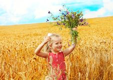 Child in wheat field. Stock Photos