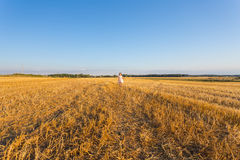 Child in wheat field. Outdoor. Stock Photos