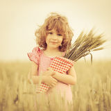 Child in wheat field Royalty Free Stock Image