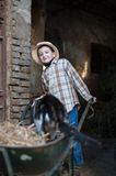 Child with a wheelbarrow with a cat. Child that loads the straw and a cat on the wheelbarrow Stock Image