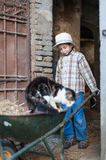 Child with a wheelbarrow with a cat. Child that loads the straw and a cat on the wheelbarrow Royalty Free Stock Images