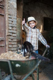 Child with a wheelbarrow. Child that loads the straw on the wheelbarrow Royalty Free Stock Photos