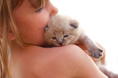 Child and a white kitten. Stock Images