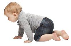 Child on white Royalty Free Stock Image