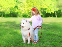 Child with white Samoyed dog on the gras Royalty Free Stock Photography