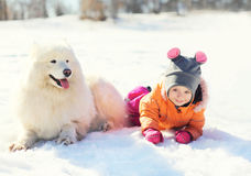 Child with white Samoyed dog lying on snow in winter Stock Image