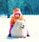 Child and white Samoyed dog lying on snow in winter Stock Images