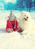 Child and white Samoyed dog on snow in winter Royalty Free Stock Images
