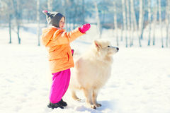 Child with white Samoyed dog on snow in winter looking away Stock Image