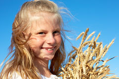 Child in white shirt holding wheat ears in the hands Royalty Free Stock Images