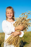 Child in white shirt holding wheat ears in the hands Royalty Free Stock Image