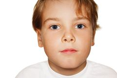 Child in a white t-shirt photography studio Royalty Free Stock Images