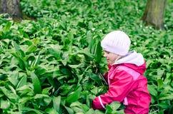 Child in wild garlic Stock Photo