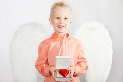 The child with wings of an angel holds the box in heart Stock Photography