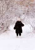 Child on winter forest Royalty Free Stock Images