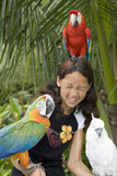 Child With Beautiful Parrots Stock Image