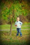 The child in the wood Stock Photo