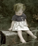 Child in the woods stock images