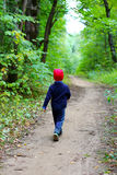 Child in the woods Royalty Free Stock Image