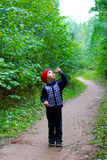 Child in the woods Stock Photo