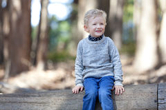 Child in the woods Royalty Free Stock Photo