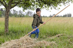 Child working in a garden with rake Stock Photography
