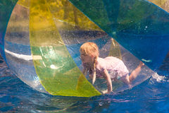 Child in the zorb Royalty Free Stock Images