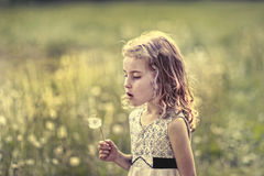 Childchood summer abstract Royalty Free Stock Image