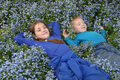 Childern in flowers_1. The childern lain in flowers Stock Images