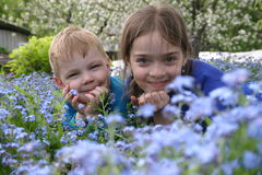 Childern in flowers_2. The childern lain in flowers Stock Photo