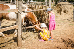 Childhood in the farm Royalty Free Stock Photo