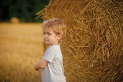 Childhood, youth, growth. Agritourism, eco tourism, vacation, travelling. Summer, harvest season Little boy at hay bale summer Childhood, youth, growth. Child royalty free stock photography