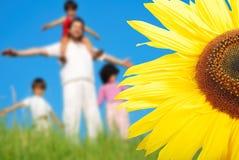 Childhool feliz en prado verde, detrás del girasol Foto de archivo